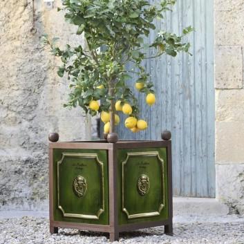 Bac à Oranger Poterie de la Madeleine Tradition Vert